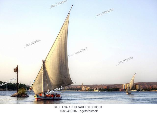sailing a felucca on the Nile in sunset near Aswan, Egypt, Africa