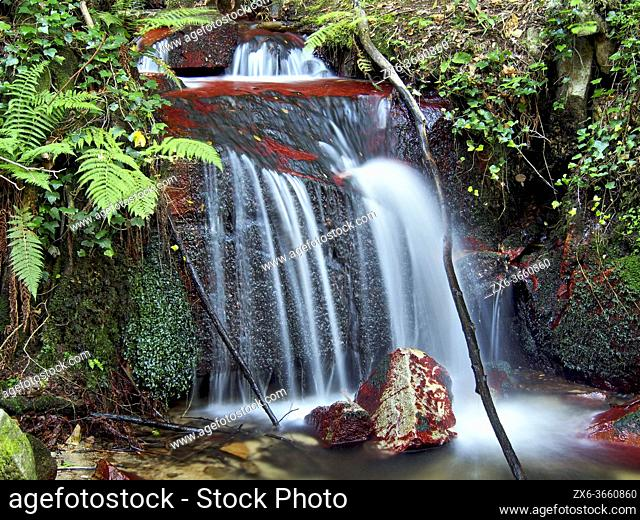 Small water fall at Sot de L'Infern stream. Arbucies village countryside. Montseny Natural Park. Barcelona province, Catalonia, Spain