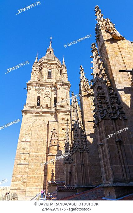 Torre de las campanas de la catedral Nueva. Salamanca. Ciudad Patrimonio de la Humanidad. Castilla León. España