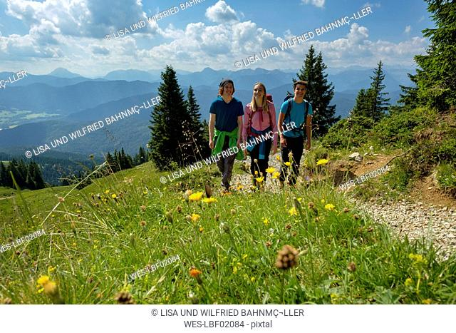Germany, Bavaria, Brauneck near Lenggries, young friends hiking in alpine landscape