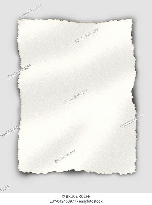 Piece of paper. Textured background