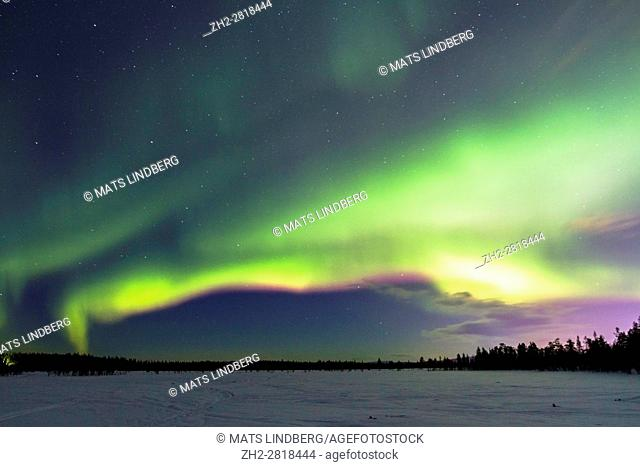 Northern light, Aurora borealis, over frozen lake with snow, aurora is green and vilett, Gällivare, Swedish Lapland, Sweden
