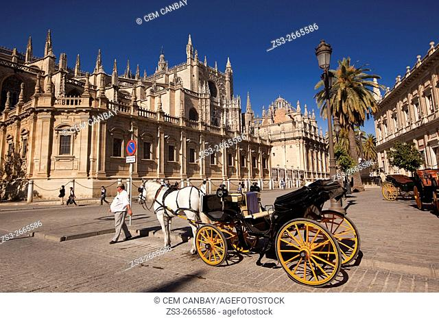 Horse-carriage during the April Fair celebrations in front of the Cathedral, Seville, Andalusia, Spain, Europe