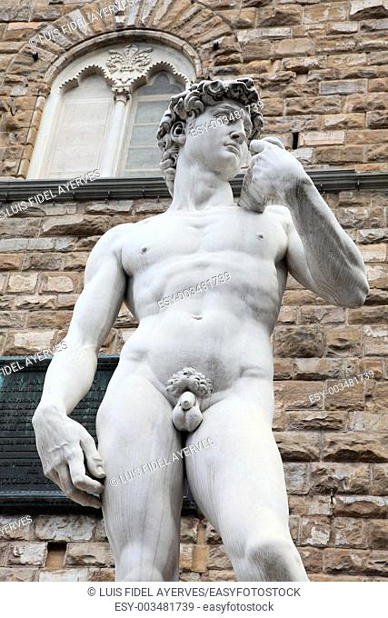 Statues of David of Michelangelo in Piazza della Signoria, Florence, Italy