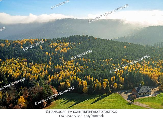 View to the atumnal painted forest of the Vosges, Alsace, France
