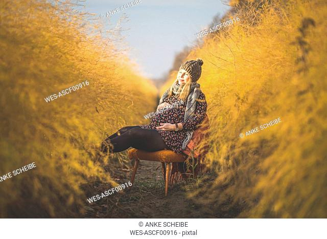 Pregnant woman sitting on chair in asparagus field in autumn