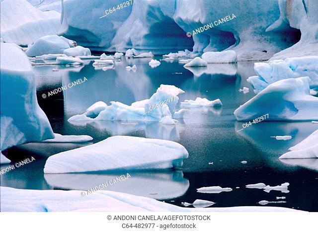 Icebergs. Glacier Perito Moreno. Los Glaciares National Park. Patagonia. Argentina