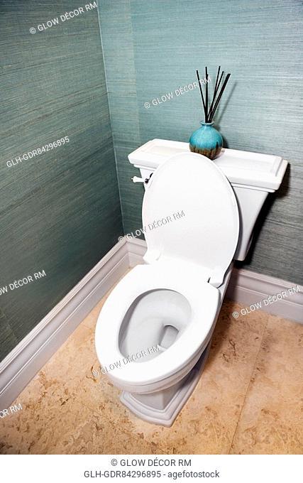 Toilet bowl in the bathroom