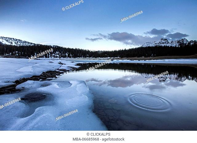 Spring thaw and woods reflected at dusk in Lake Palù Province of Sondrio Malenco Valley Valtellina Lombardy Italy Europe