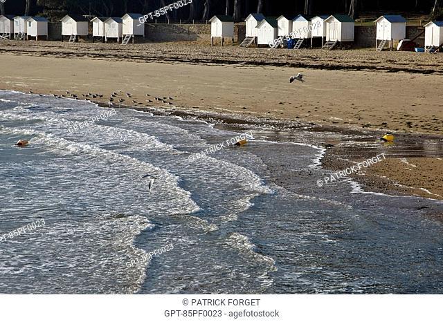 CABINS ON THE LES DAMES BEACH, ILE DE NOIRMOUTIER, VENDEE 85, FRANCE