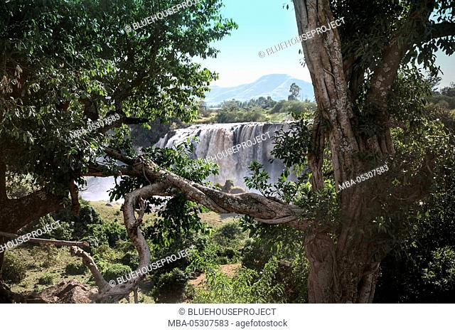 Nile waterfalls, Tis Issat, Amhara, the Blue Nile
