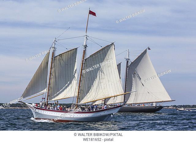 USA, New England, Massachusetts, Cape Ann, Gloucester, Gloucester Schooner Festival, schooner parade of sail
