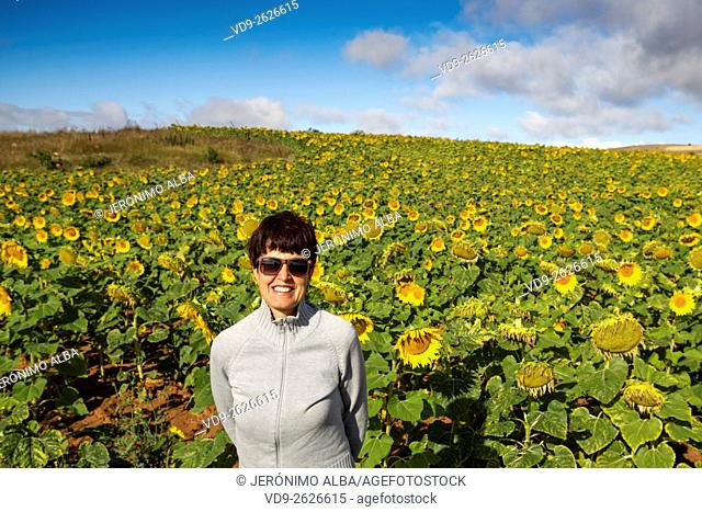 Woman sunflowers field, Burgos Castilla Leon. Spain