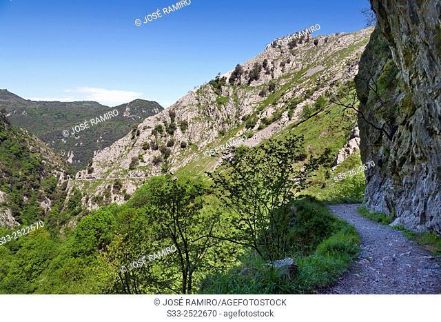Xanas canyon. Asturias. Spain