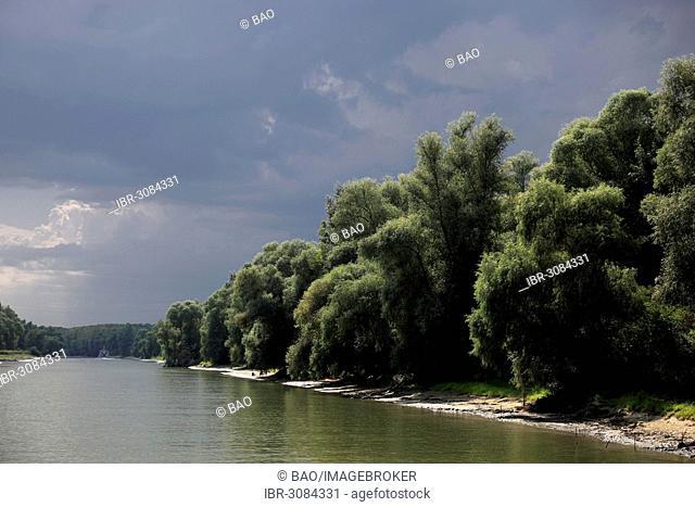Danube River, Danube Delta Biosphere Reserve, near Tulcea, Romania