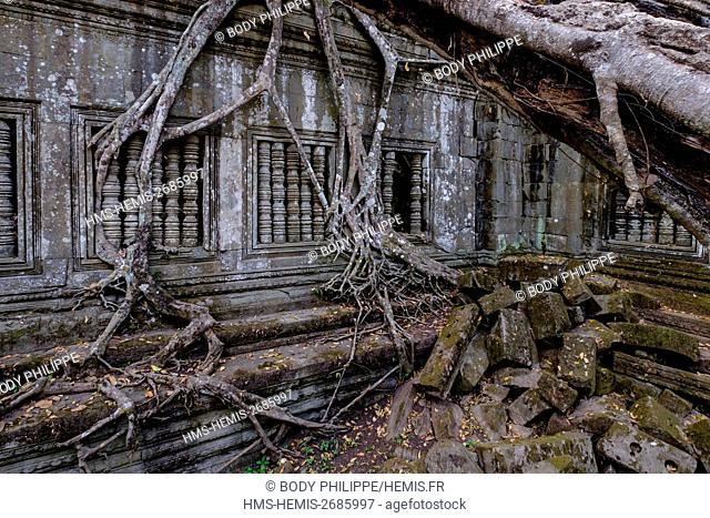 Cambodia, Siem Reap province, Temple of Beng Mealea, built in 12th century by King Suryavarman II
