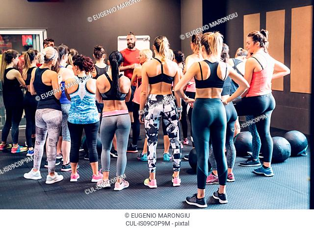 Group of women training in gym, listening to male trainer, rear view