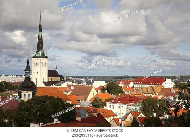 View to the rooftops of the traditional buildings in the old town with the St. Olav's Church at the background, Tallinn, Estonia, Baltic States, Europe