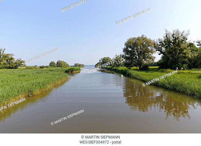 Austria, Vorarlberg, Hard, Dornbirn Ach, nature reserve Rhine Delta