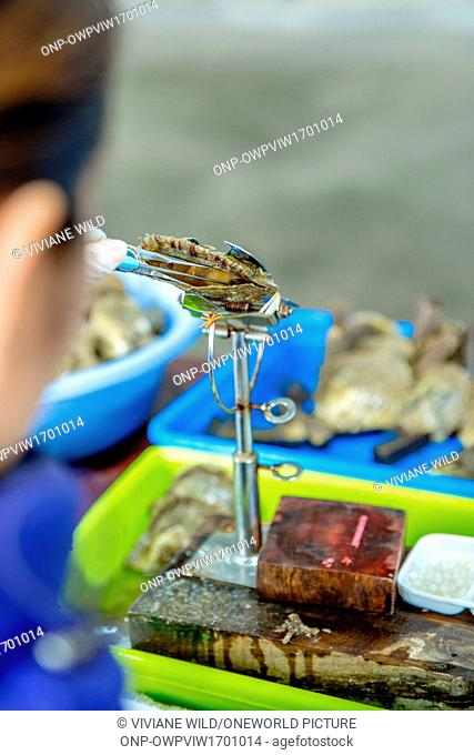 Vietnam, Qu?ng Ninh, Thành ph? H? Long, Legend Pearl Halong Bay. Pearl farm in the Halong Bay. Oyster farming and oyster pearls