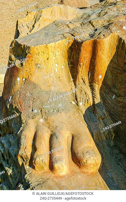 Egypt, Nile Delta, Tanis, exhibition of several ancient artifacts : Foot of a colossus