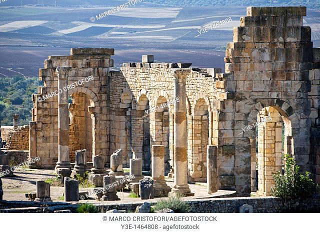 Basilica, Roman Ruins, Volubilis, Morocco