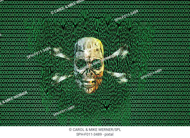 Artist's concept of the destruction of digital data with a skull and crossbones