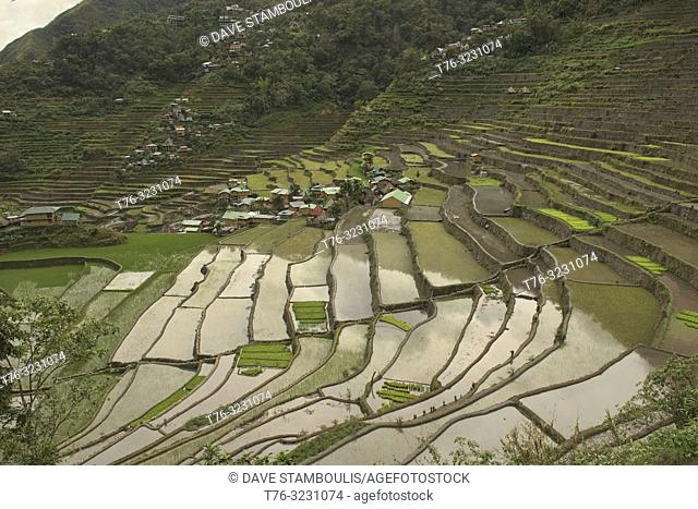 The amazing UNESCO rice terraces of Batad, Banaue, Mountain Province, Philippines