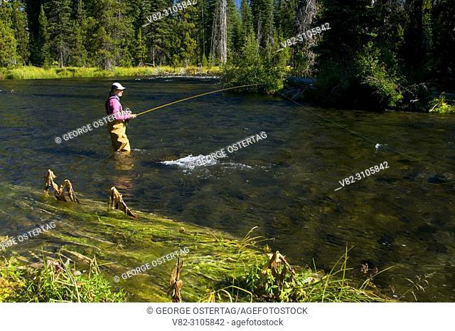 Flyfishing the Deschutes River at Mile Camp, Deschutes National Forest, Oregon