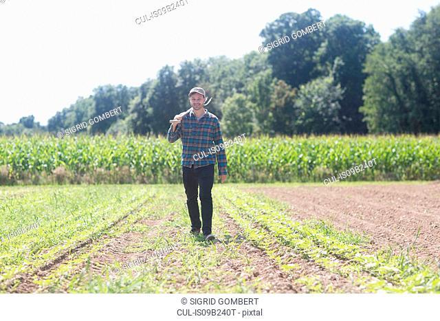 Farmer in field carrying spade on shoulder