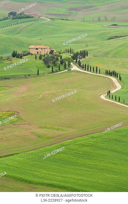 Val d` Orcia in spring Tuscany Italy