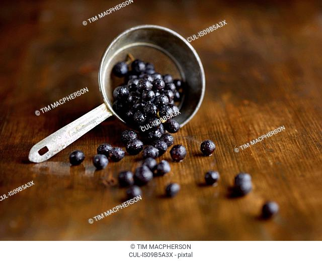 Still life of scoop of black grapes on wooden surface