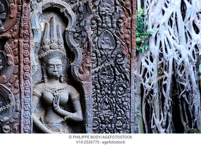 Cambodia, Angkor on World Heritage list of UNESCO, Ta Prohm temple, built in XII century, by King Jayavarman VII