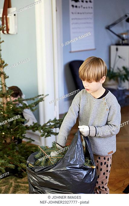 Christmas Tree cleanup