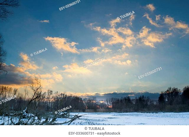 Snowy Winter Danube Backwater Landscape after Cloudy Sunset with Bare Roots
