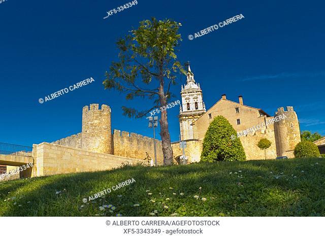 Wall City and Door of San Miguel, 15th Century, El Burgo de Osma, Soria, Castilla y León, Spain, Europe