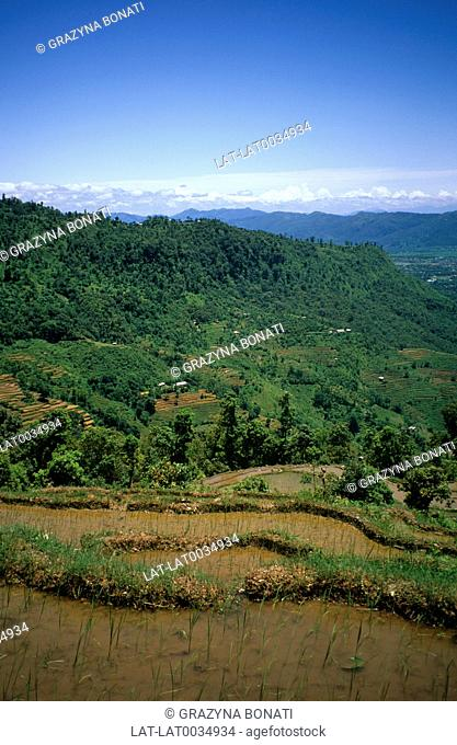 The climate in the Pokhara valley and surrounding mountains is temperate and sub tropical,and the slopes are terraced with rice paddies