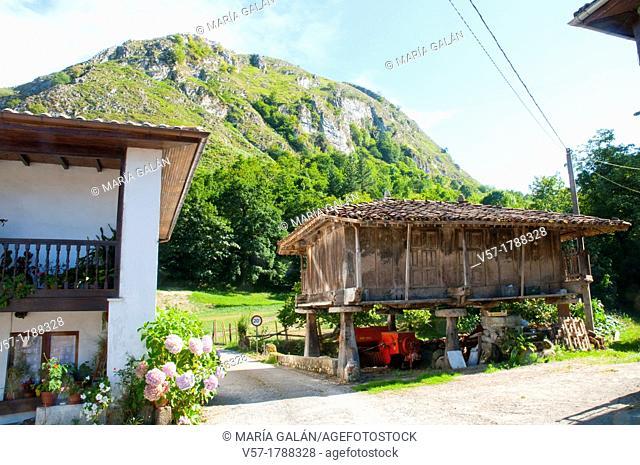 Horreo and landscape. Espinaredo, Asturias province, Spain
