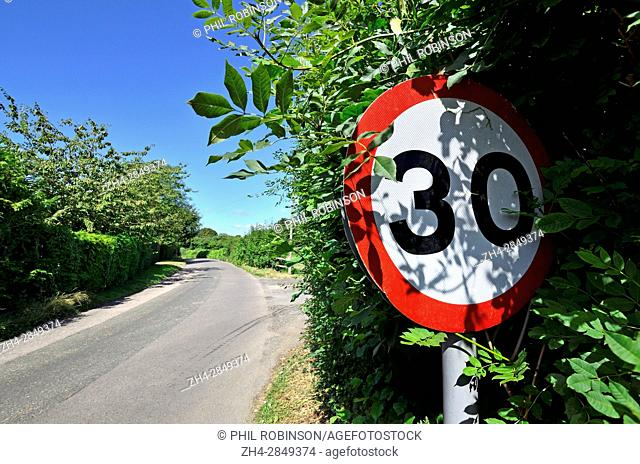 Almost obscured 30mph speed limit sign on a country road. Kent, England, UK
