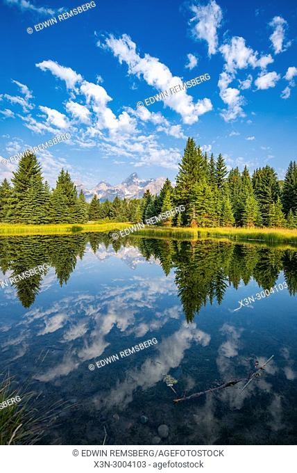 Still water reflects mighty Teton Mountain Range and forest foliage with cloudy skies, Grand Tetons National Park, Teton County, Wyoming. USA