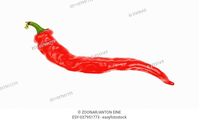 Red hot chili pepper close up isolated on white