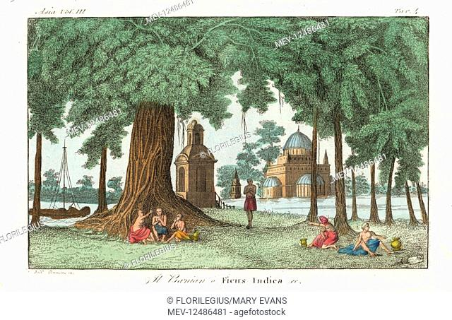 Indian men and women under an Indian banyan tree, Ficus benghalensis, with temple in the background, 1800s. Handcoloured copperplate engraving by Andrea...