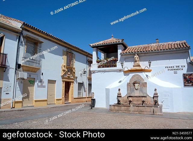 Plaza de la Fuenseca. City of Cordoba, Andalucia, Spain, Europe
