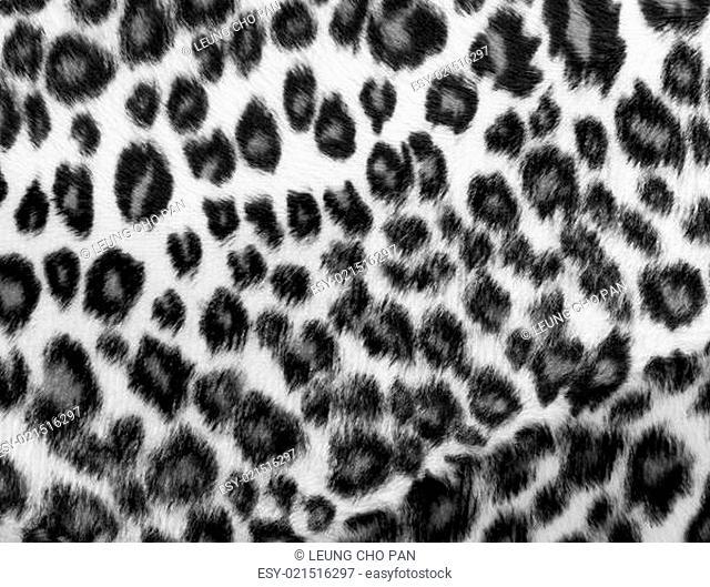 Monochrome leopard Print