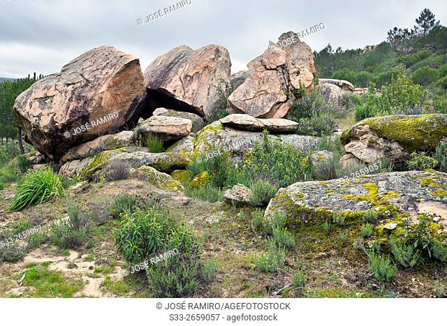 Granite in Valdelavieja. Cadalso de los Vidrios. Madrid. Spain. Europe