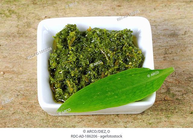 Ramson pesto, Allium ursinum