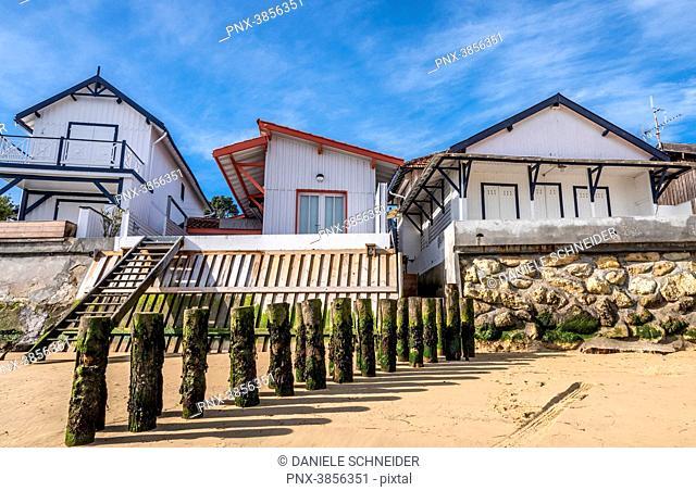 France, Gironde, Arcachon Bay, Cap Ferret, L'Herbe oyster village, houses along the beach and groyn against coastal flood