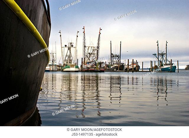 Commercial fishing boat harbor, Charleston, Oregon