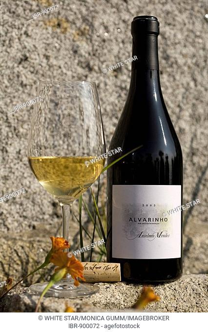 Alvarinho, a Vinho Verde of the Oenologist Anselmo Mendes, one of the most successfully Vinho Verde vintners, Vila Nova de Anha near Viana do Castelo