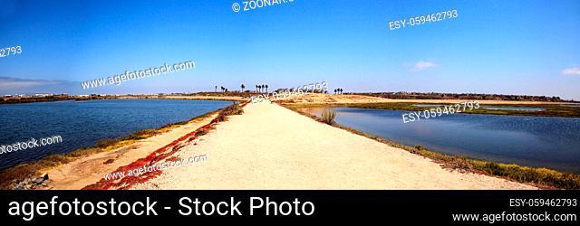 Path along the peaceful and tranquil marsh of Bolsa Chica wetlands in Huntington Beach, California, USA